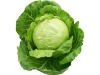Cabbage ( bandgobhi )